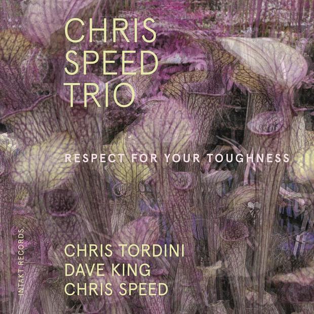 Chris Speed Trio