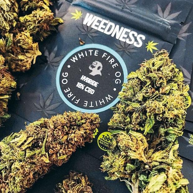 Le business fumeux des boutiques de cannabis