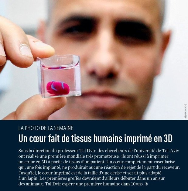 Un coeur fait de tissus humains imprimé en 3D