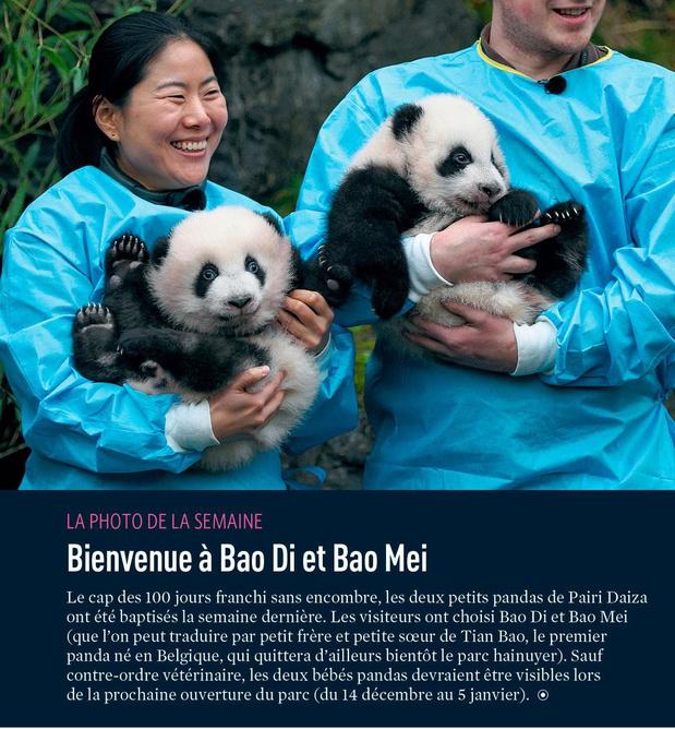 Bienvenue à Bao Di et Bao Mei