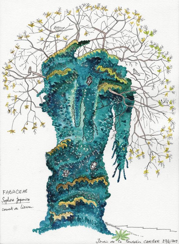 Groene longen