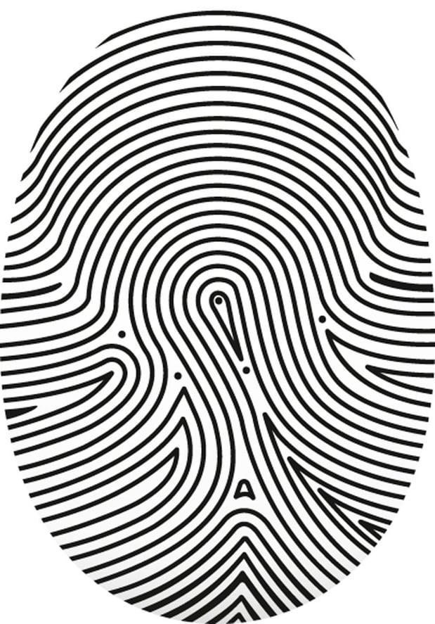 Europa werkt aan gigantische biometrische databank