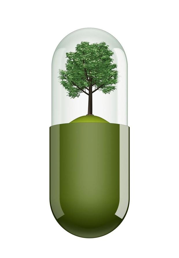 Des 'pilules de nature' contre le stress