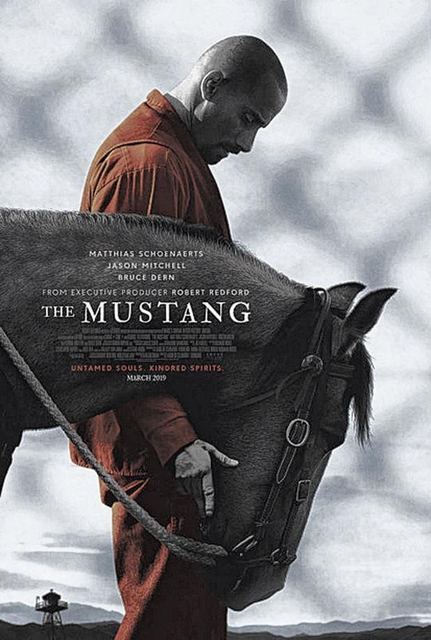 [Critique ciné] The Mustang, un vrai beau projet de cinéma