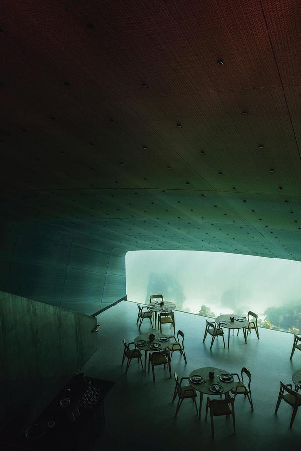 Un dîner sous la mer