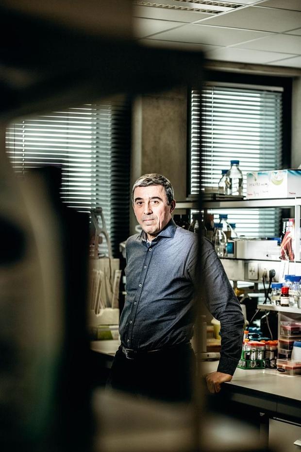 Topwetenschapper Peter Carmeliet: 'We praten met een investeringsfonds om een spin-off op te richten'