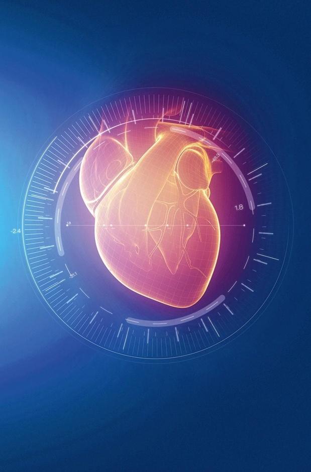 Des scientifiques ont réussi à imprimer des parties fonctionnelles du coeur