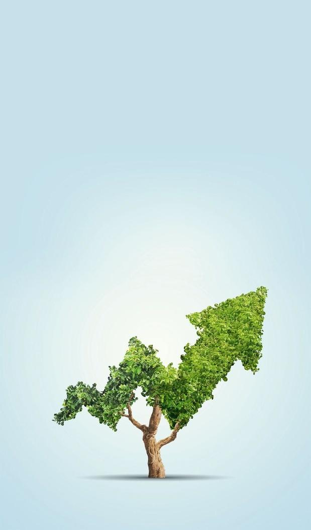 La Belgique à la pointe en matière d'investissements durables