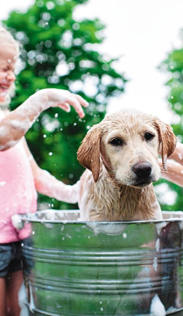 Au bain au jardin !