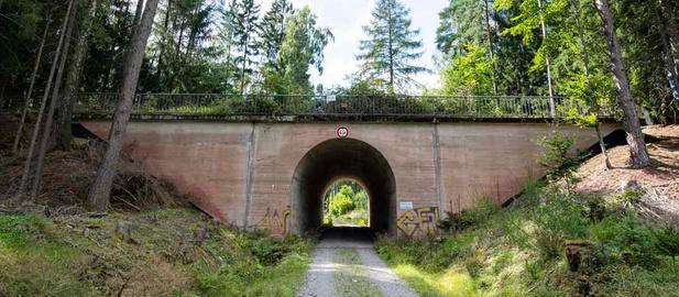 Une autoroute de l'époque nazie refait surface (en images)