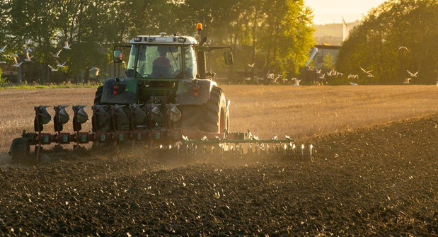 West-Vlaamse landbouwers betalen hoogste pachten