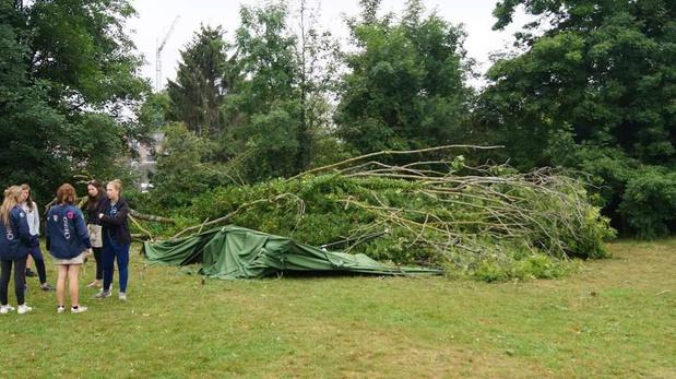Chiro houdt inzamelactie nadat omgevallen boom patrouilletent vernielt