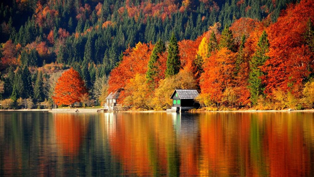 Wanneer Slovenië oranje kleurt