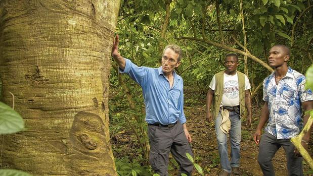 L'arbre qui est l'ami des paysans africains