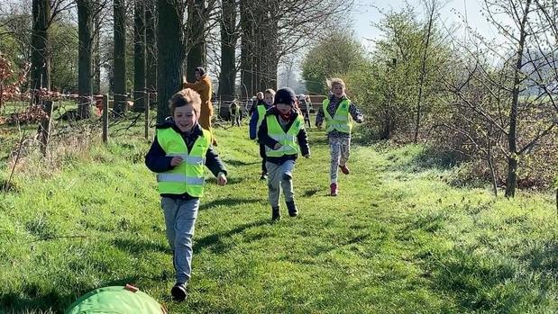 Ruim 220 kinderen voor eerste editie van Animal Games in Zedelgem