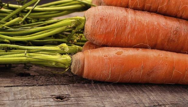 Veganisme krijgt hulp van darmbacterie