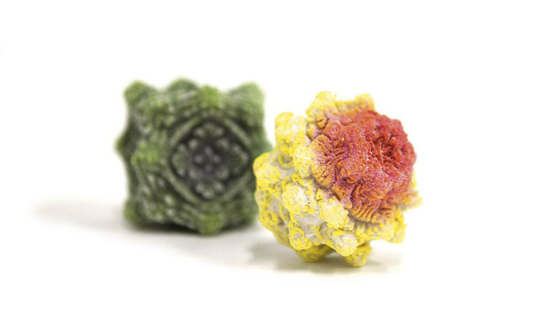 Des fleurs de labo pour leurrer les abeilles