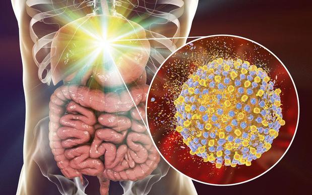 Focus op hepatitis nog steeds nodig