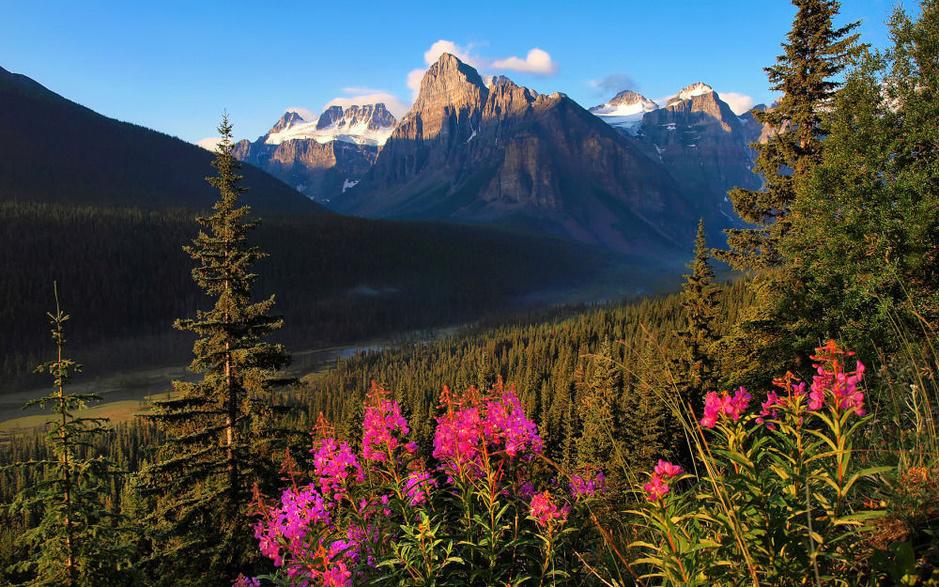 Quarante charmantes destinations à visiter au printemps