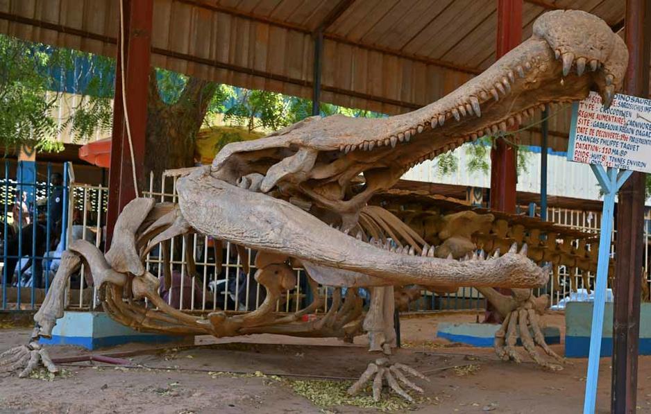 Boubou Hama : L'éclectique Musée-Zoo du Niger (en images)