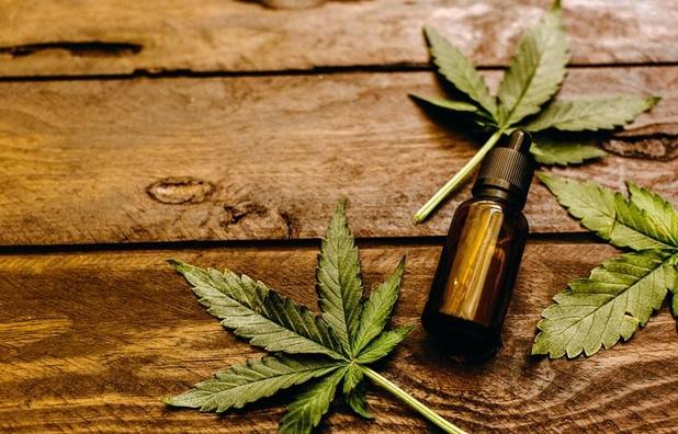 Cannabis thérapeutique: expérimentation en France