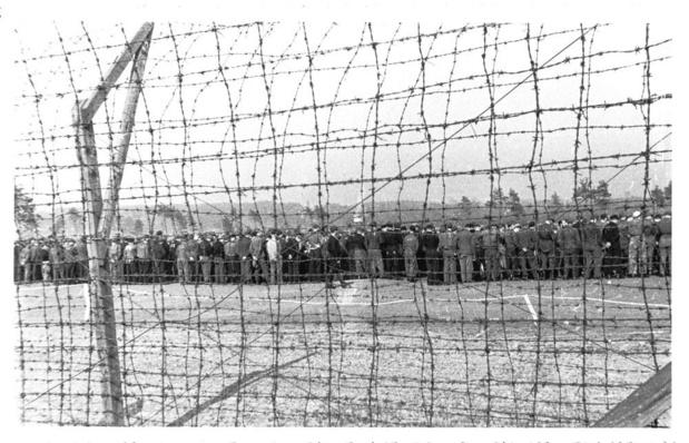 1945 : dans la peau des captifs vert-de-gris