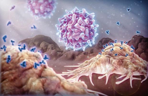 Hoogtepunten in de hematologie bij volwassenen