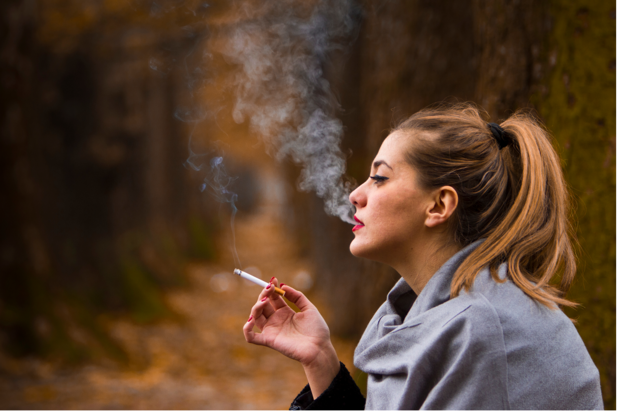 Interdiction de fumer dans les forêts et réserves naturelles flamandes