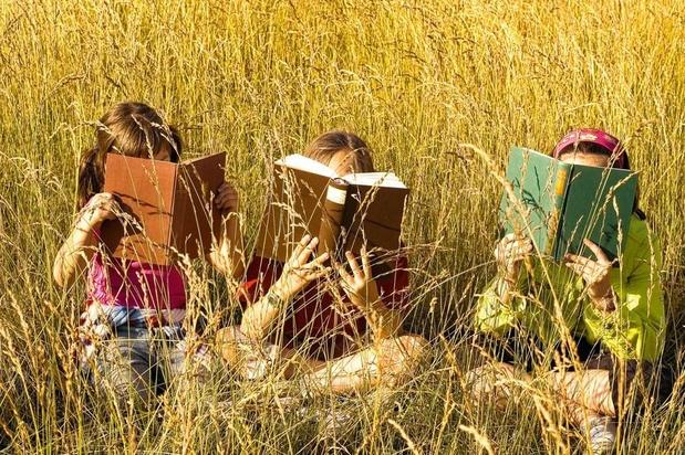 Comment se porte le livre jeunesse?