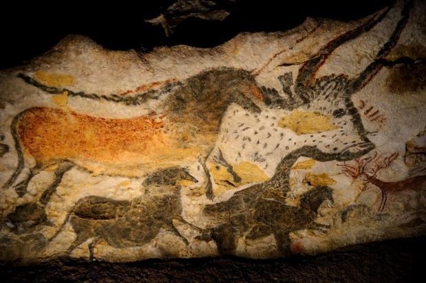 Prehistorisch museum Flémalle ontvangt vr-expo over grotten van Lascaux
