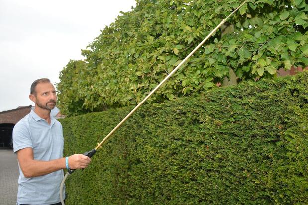 """Peter Hilderson start als wespenverdelger: """"Niet alleen taak voor brandweer"""""""
