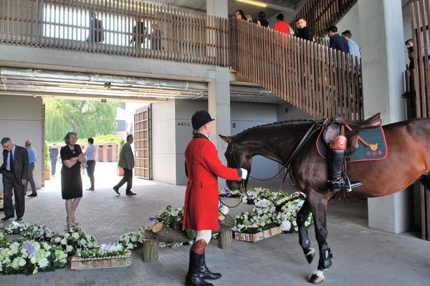 Jachtpaard Eline staat centraal op afscheid van Tom Ryckewaert in Waregem