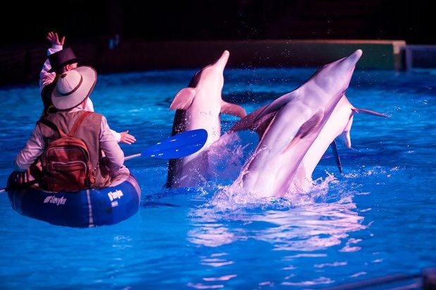 Wat met Boudewijn Seapark zonder dolfijnen?