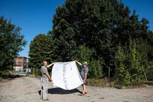 """Actievoerders willen bomen redden rond 55 nieuwe appartementen in Vichte: """"Moéten blijven"""""""