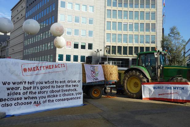 Des éleveurs manifestent à Bruxelles pour briser les mythes autour de la viande