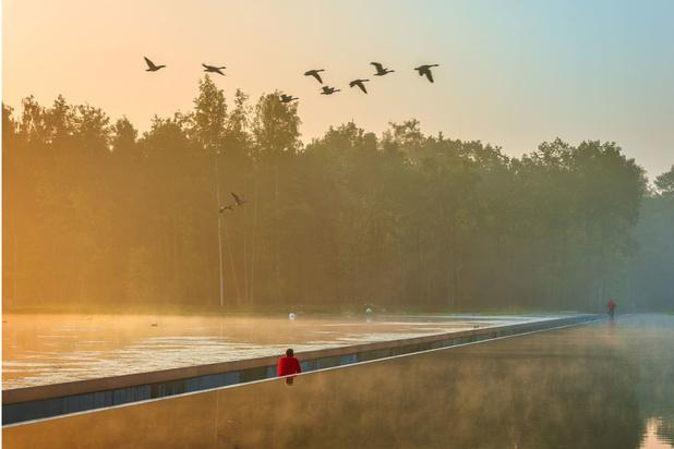 En route pour le Limbourg: nos dix coups de coeur (CARTE)