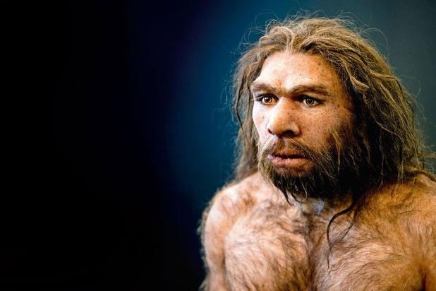 Néandertal entendait aussi bien que nos ancêtres