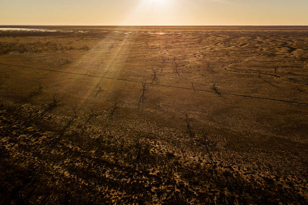 """Les médecins australiens reconnaissent le changement climatique comme """"urgence sanitaire"""""""