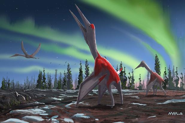 Paléontologie : découverte d'un dragon piégé dans la glace au Canada