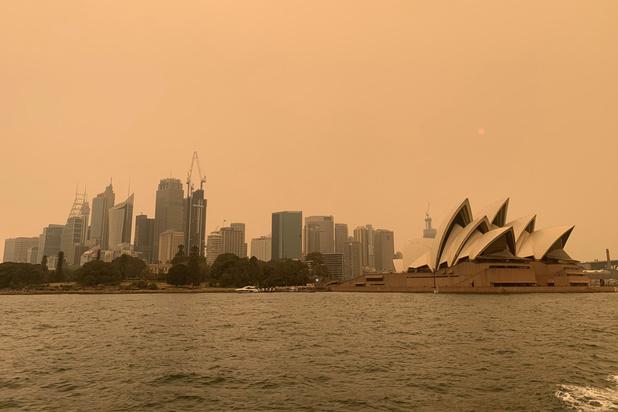 """""""Une vraie fournaise"""" : l'Australie face à une vague de chaleur record"""