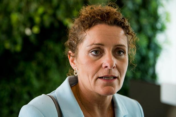 Peeters en Demir weerleggen berichten over 'illegale boomkap' door Vlaamse overheid