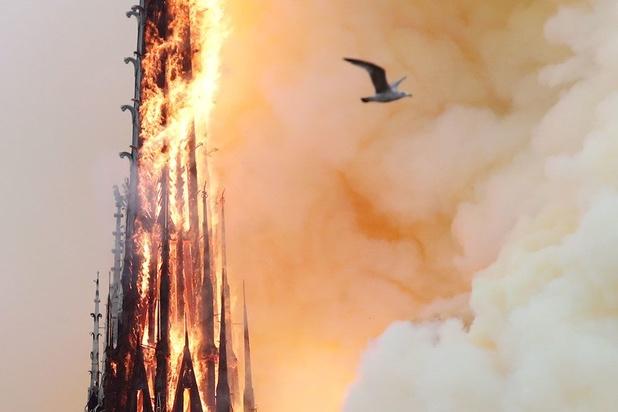 Notre-Dame mobilise les riches de ce monde: des centaines de millions pour la reconstruction
