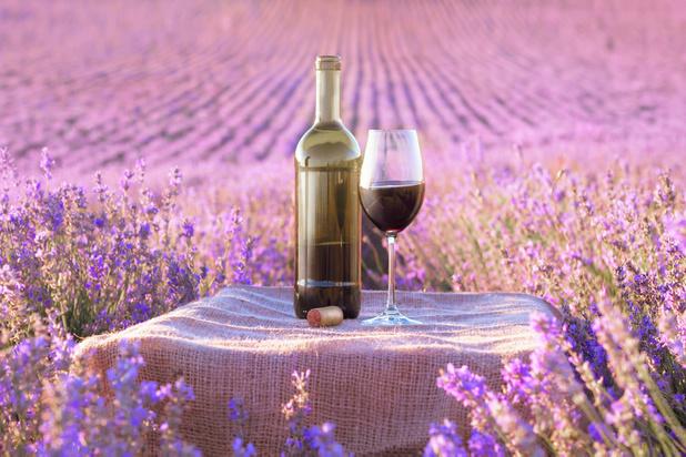 Face aux menaces américaines, les viticulteurs de Provence lorgnent sur de nouveaux marchés