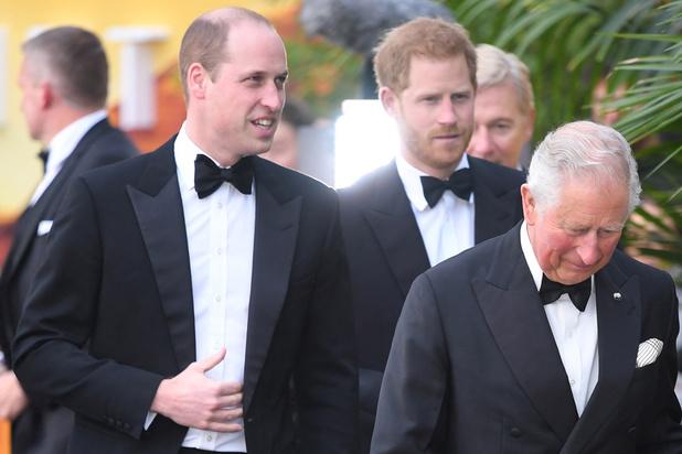 Harry et William, deux princes, deux chemins différents