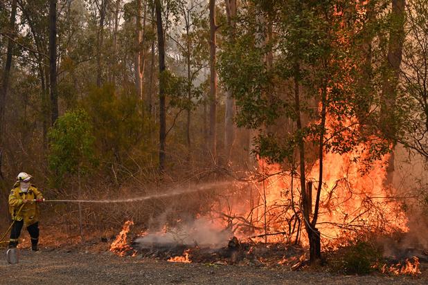 Au moins trois morts dans des incendies de forêt en Australie