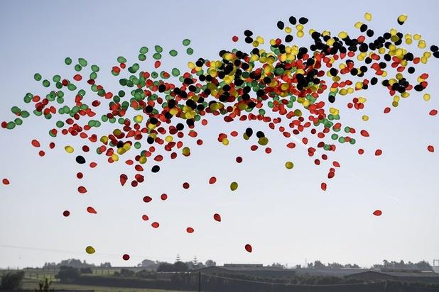 'Verbod op oplaten van ballonnen moet haalbaar zijn'