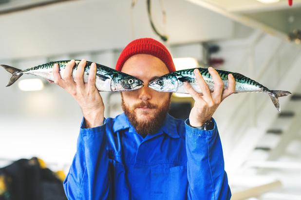 Pour un poisson plus durable, mettez-le au régime végétarien