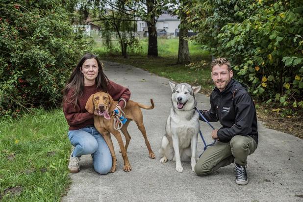 """Eigenaar verbolgen: """"Roeselaars dierenasiel wil onze hond niet teruggeven"""""""