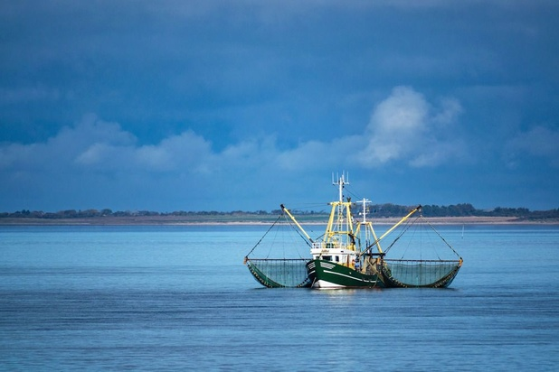 No-dealbrexit? Dan wil Londen marine inzetten tegen EU-vissers