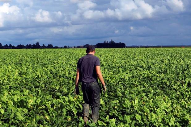 Les surfaces bâties ont augmenté de 55.000 hectares en 10 ans en Belgique